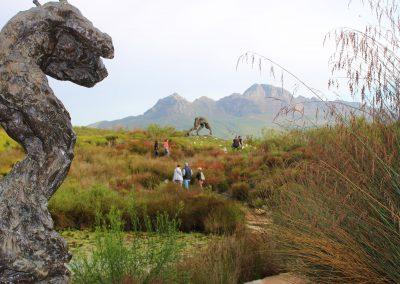 25-Stellenbosch