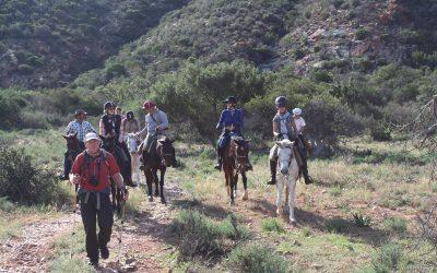 Pilgrims in the Baviaans